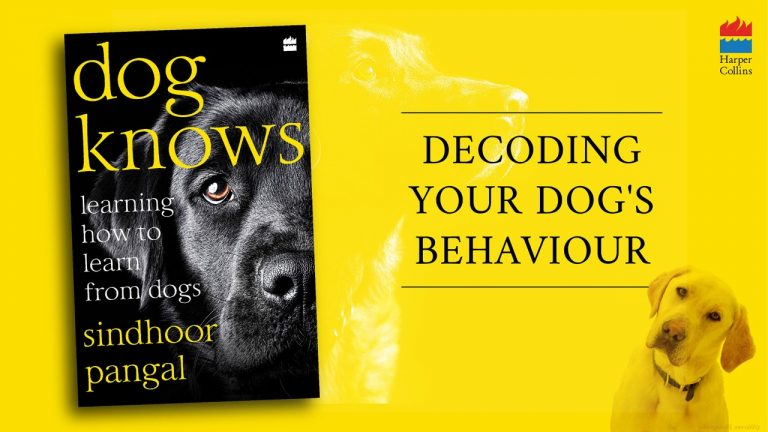 Dog knows poster harpercollins